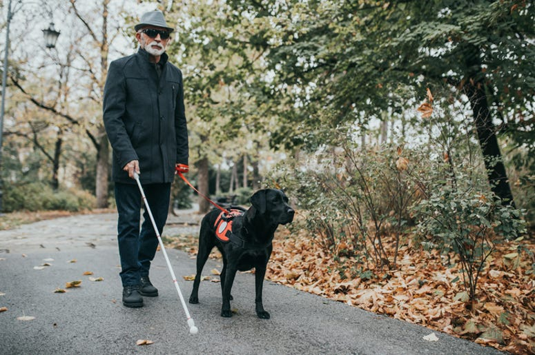 Mature blind man with dog