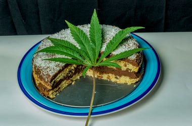 Coconut chocolate cake on blue dish with marijuana green leaf