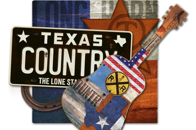 Texas Country Music Art Piece with license plate horseshoe guitar leather star brand long horn steer