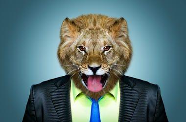Portrait of a lion in a business suit.
