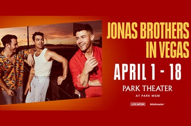 The Jonas Brothers: Live In Las Vegas