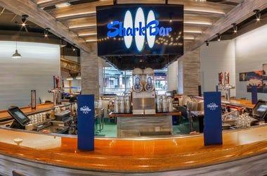 Shark Bar STL