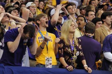 LSU College Football fan