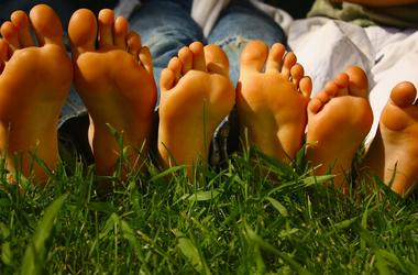 Three pairs of Growing feet on grass.