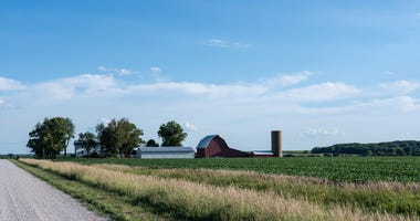 Service forecasts record Kansas soybean crop