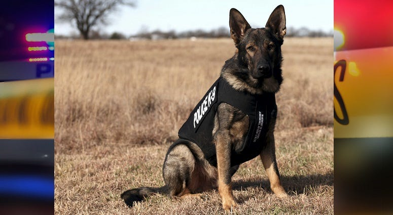 Butler Community College K9 receives protective vest