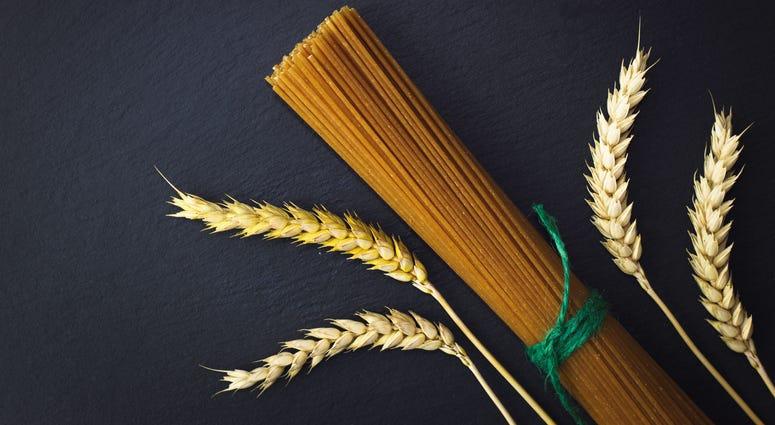 pasta, wheat