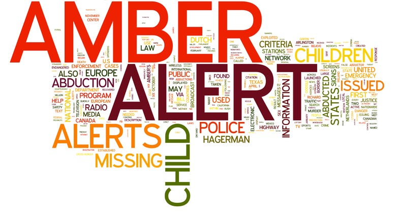 Amber Alert related words isolated on white background