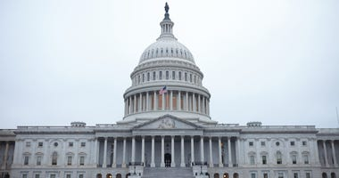 picture of nation's capitol in Washington D.C.