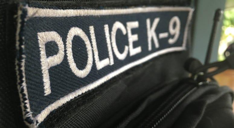 white word police k-9 on black fabric badge