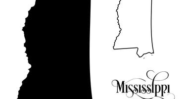 State of Mississippi - illustration on white background