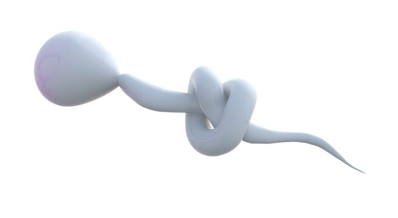sperm with a knot on it, the sterility concept