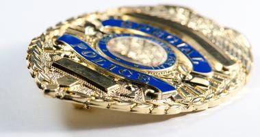 a close up of a generic looking police badge