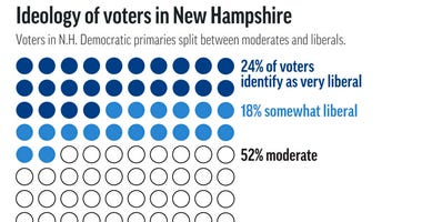AP VoteCast shows the ideological breakdown of New Hampshire's Democratic voters.