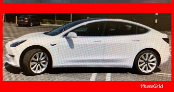 Hit-and-Run Tesla LAPD