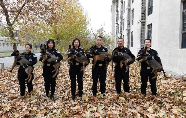 Beijing police officers pose for a photo holding cloned police dogs in a photo released by the Beijing Municipal Public Security Bureau on November 20, 2019.