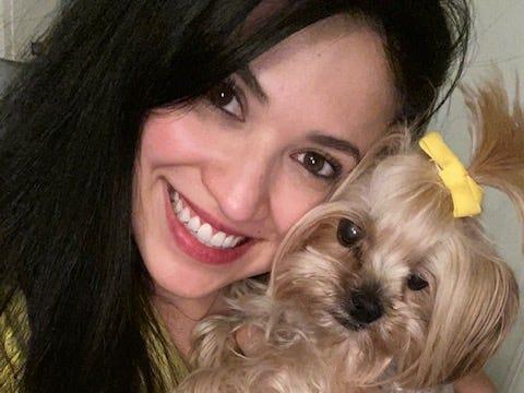 Nina, yorkie, dog, dogs, pet