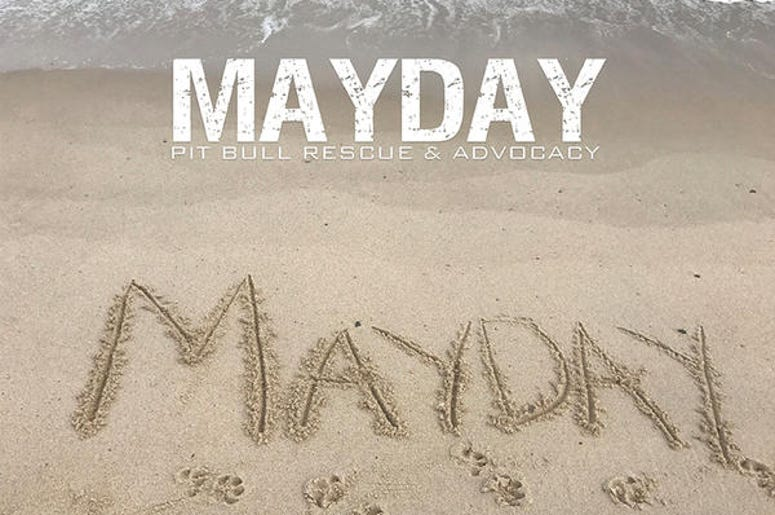 Mayday Pitbull Rescue