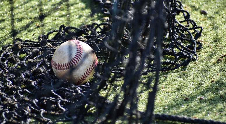 Baseball netting