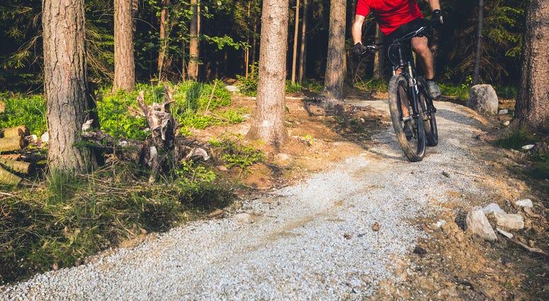 Mountain biker, riding