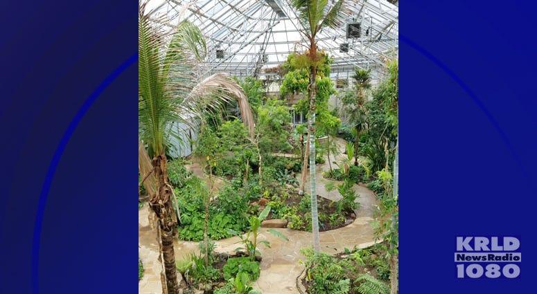 Fort Worth Botanic Garden Opens Rainforest Conservatory Krld 1080