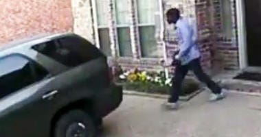 DPD Package Thief