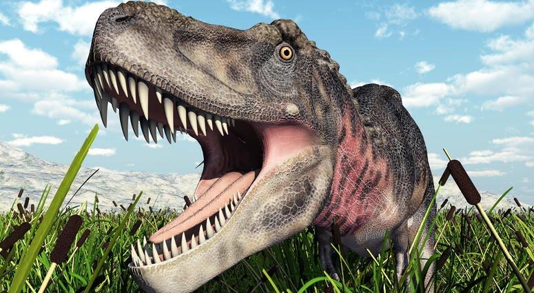 Dinosaur Tarbosaurus