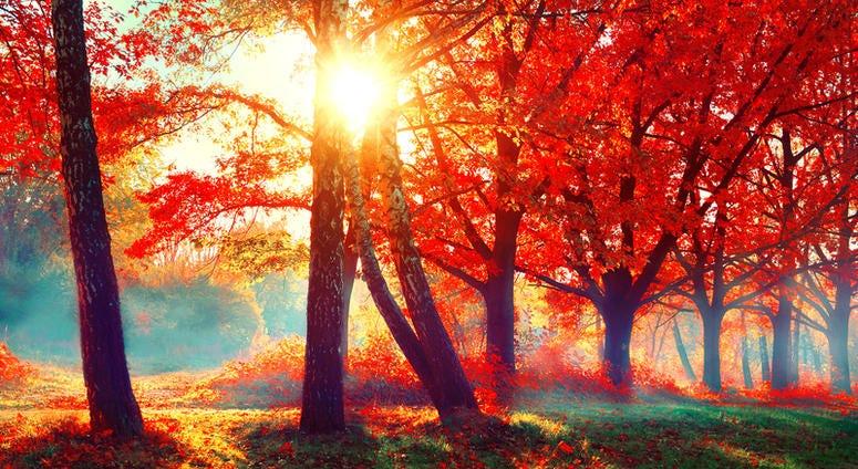 Fall Weather