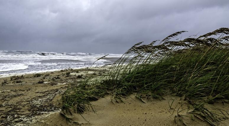 Gulf Storm