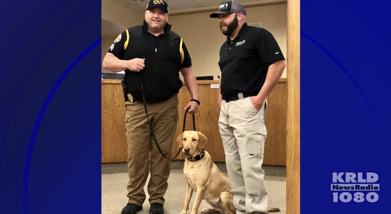 K-9 Sector's Weapons and Drugs Detection training program