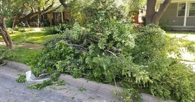 Storm Debris, Bulk Trash Pickup