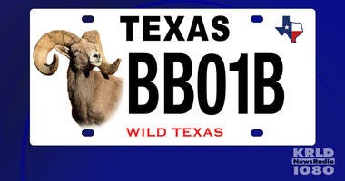 New Texas License Plate
