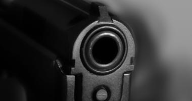 Handgun, Gun