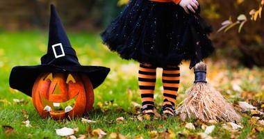 Halloween, Trick Or Treat