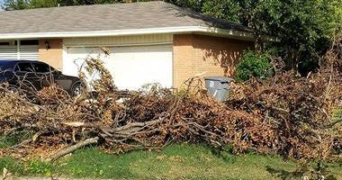 Dallas Storm Debris