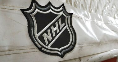 NHL Hockey Net