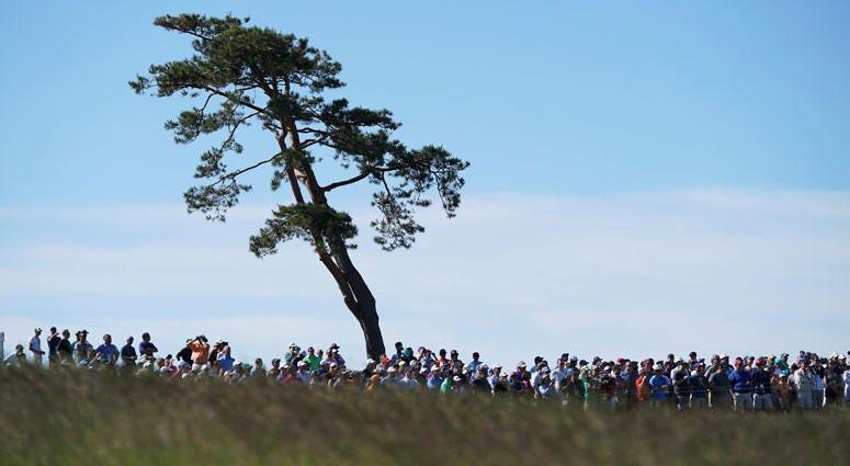AP U.S. Open Golf Championship
