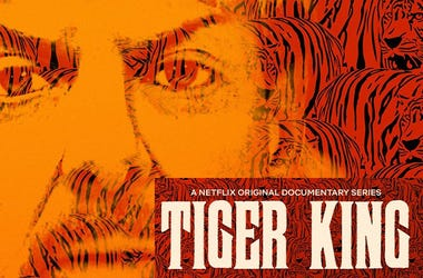 Get Up On This with Jensen Karp: The Platform / Tiger King: Murder, Mayhem and Madness / The Most Dangerous Animal of All