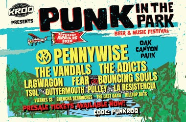 punk in the park