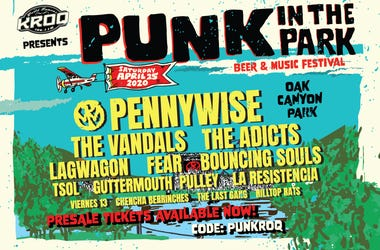 Punk in the Park 2020