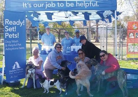 Helpful Honda Pet Adoptions
