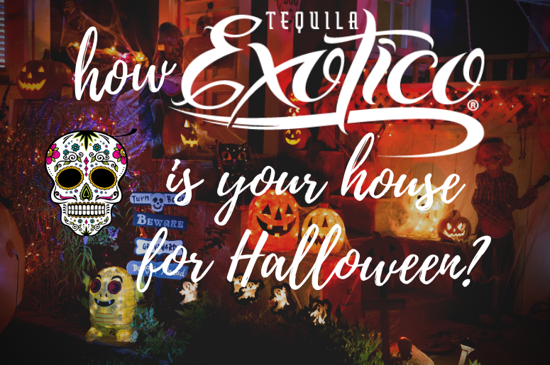 exotico halloween