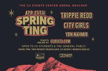 Spring Ting