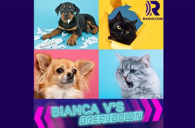 Bianca V's Breakdown: Lifestyle/Society/Cultural