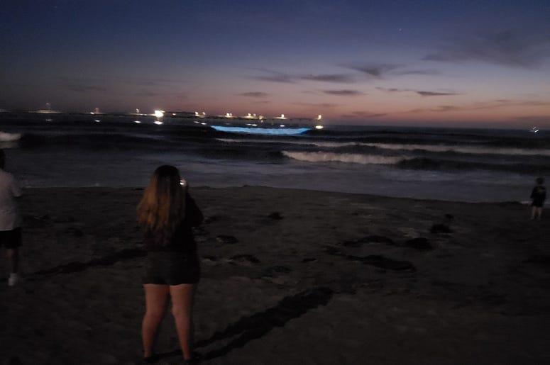 Bioluminescence with kurt