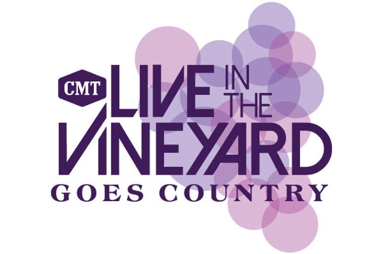 LITVGC 2020 Logo