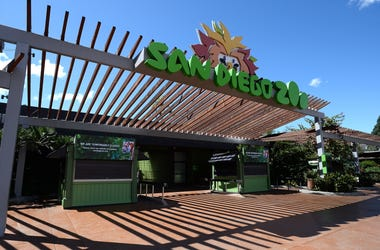 SD Zoo Front