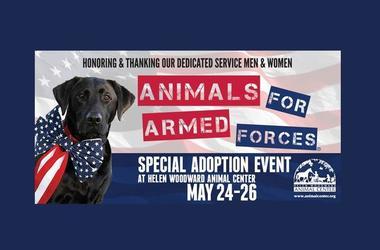 Armed Forces Foundation >> Armed Forces Foundation Kson Fm 103 7