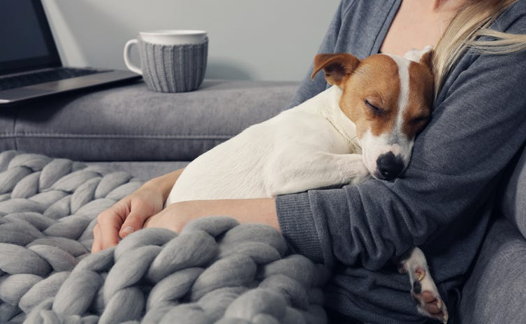 Cuddling with a dog