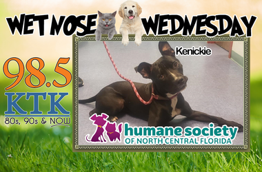 Wet Nose Wednesday-Kenickie